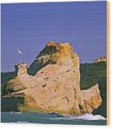 Rocky Coast Of Cape Kiwanda State Wood Print