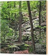 Rocky Forest Of Chatfield Wood Print