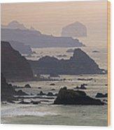 Rocky Headlands On The Big Sur Coast Wood Print