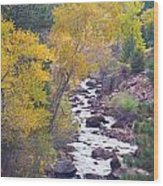 Rocky Mountain Golden Canyon Scenic View Wood Print