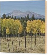 Rocky Mountain High Country Autumn Fall Foliage Scenic View Wood Print