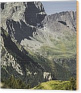 Rocky Mountains Over Grassy Landscape Wood Print