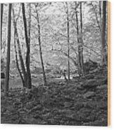 Rocky Road Wood Print