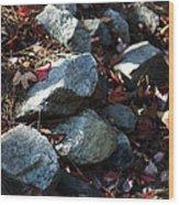 Rocky Walk Wood Print