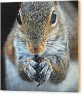 Rodent Wood Print