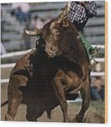 Rodeo Competitor In A Steer Riding Wood Print by Chris Johns