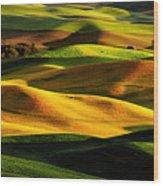 Rolling Hills Of Palouse Wood Print