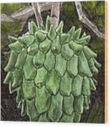 Rollinia Wood Print by Steve Asbell