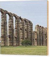 Roman Aquaduct Wood Print