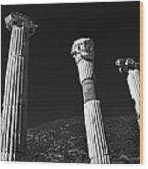 Roman Columns. Wood Print