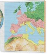 Roman Empire, Artwork Wood Print