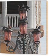Roman Pigeons Wood Print