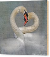 Romantic Image Of Courting Swans Wood Print