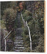 Romantic Pathway In Fall Wood Print