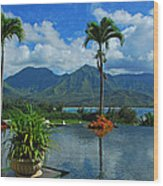 Rooftop Fountain In Paradise Wood Print