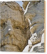Roosevelt On Mt Rushmore National Monument Wood Print