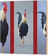 Rooster Triptych Wood Print