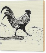 Rooster's Stride Wood Print