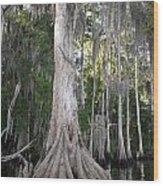 Root Work Wood Print