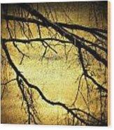 Roots At Night Wood Print by Michael L Kimble
