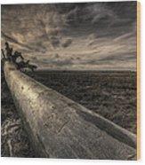 Roots Wood Print by James Ingham