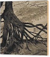 Roots Wood Print by Odd Jeppesen