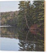 Rope Swing On Bear Creek Lake Wood Print