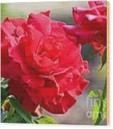 Rosas Roja Wood Print