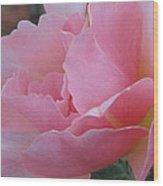 Rose 01 Wood Print