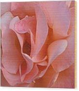 Rose 02 Wood Print