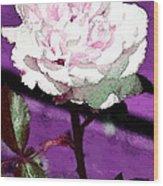 Rose 108 Wood Print