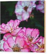 Rose 121 Wood Print