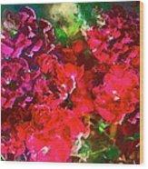 Rose 143 Wood Print by Pamela Cooper