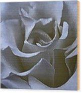 Rose 156 Wood Print
