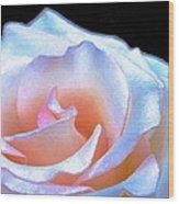 Rose 158 Wood Print
