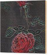 Rose 85 Wood Print