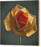Rose-9 Wood Print