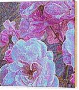 Rose 94 Wood Print