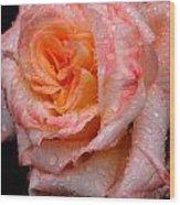 Rose And Raindrops On Black Wood Print