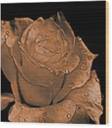 Rose Art  Sepia Wood Print