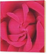 Rose Center 1 Wood Print