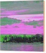 Rose Colore Scape Wood Print