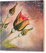Rose Creation Wood Print