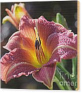 Rose Day Lily Wood Print