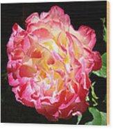 Rose Floral Fine Art Prints Pink Roses Flower Wood Print