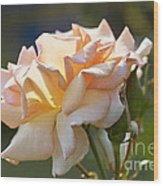 Rose Flower Series 15 Wood Print