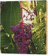 Rose Grape Wood Print