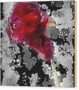 Rose Wood Print by Mauro Celotti