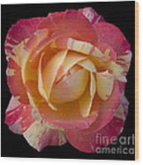 Rose On Black Wood Print