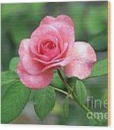 Rose Parade Wood Print